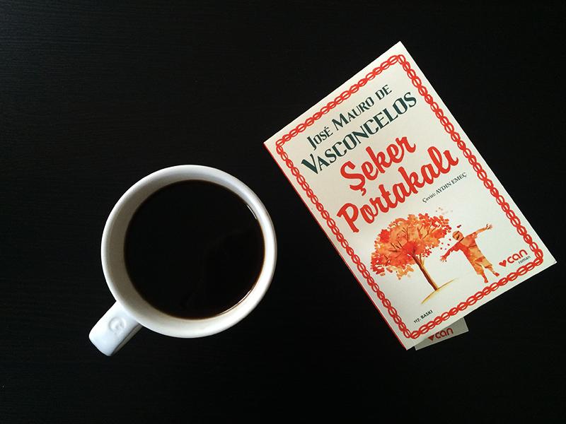seker-portakali-jose-mauro-de-vasconcelos-3