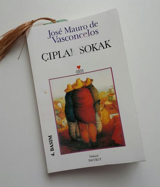 ciplak-sokak-jose-mauro-de-vasconcelos-2